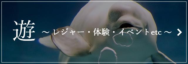遊 ~レジャー・体験・イベントetc~