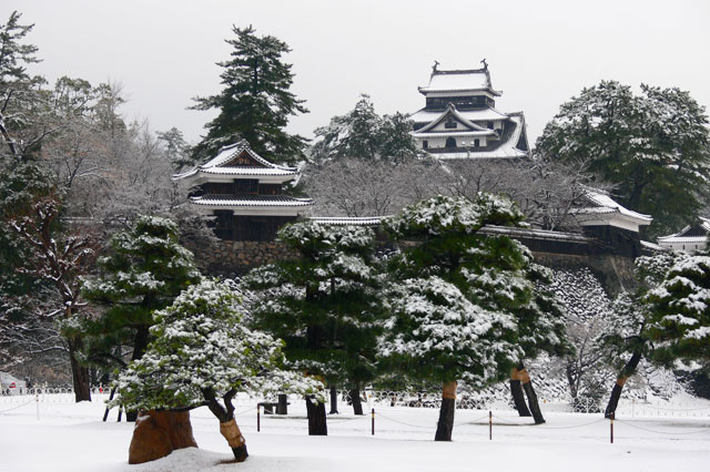 雪化粧の松江城