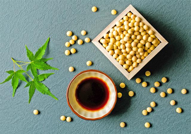 原料の大豆