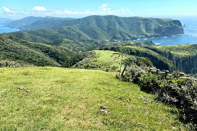 ありのままの自然だけが広がる島