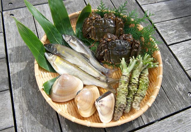 多彩な魚介類