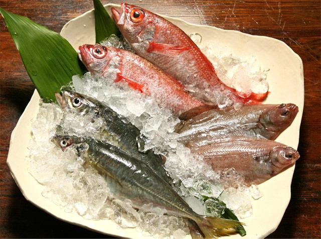 美味しい魚介類